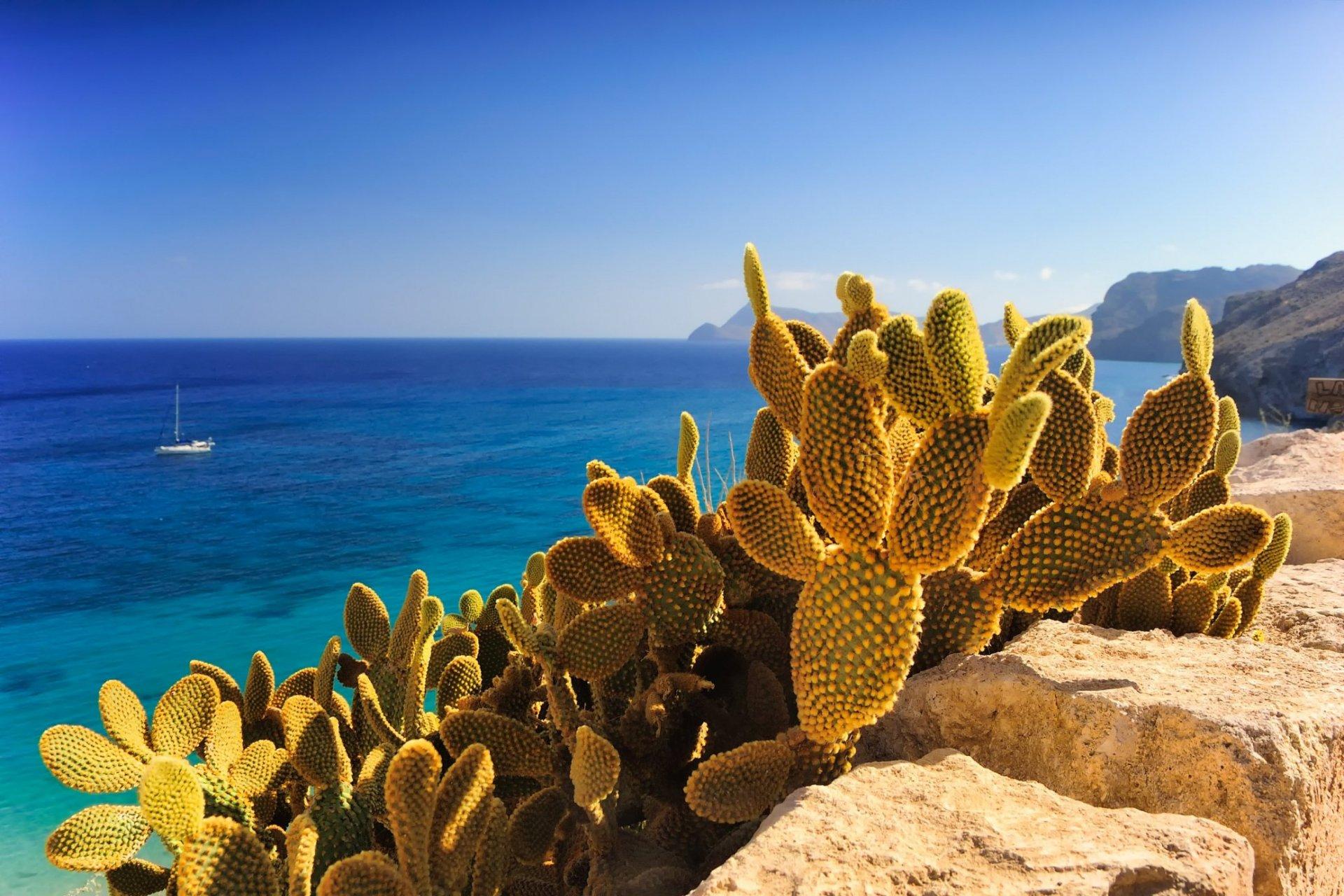 ibiza x-events mallorca incentive reisen und gruppenreisen
